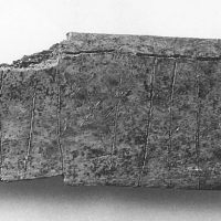 Cow's rib inscribed with runes (c) Lincolnshire County Council