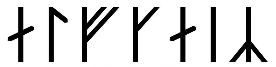 Alfgeir written in runes